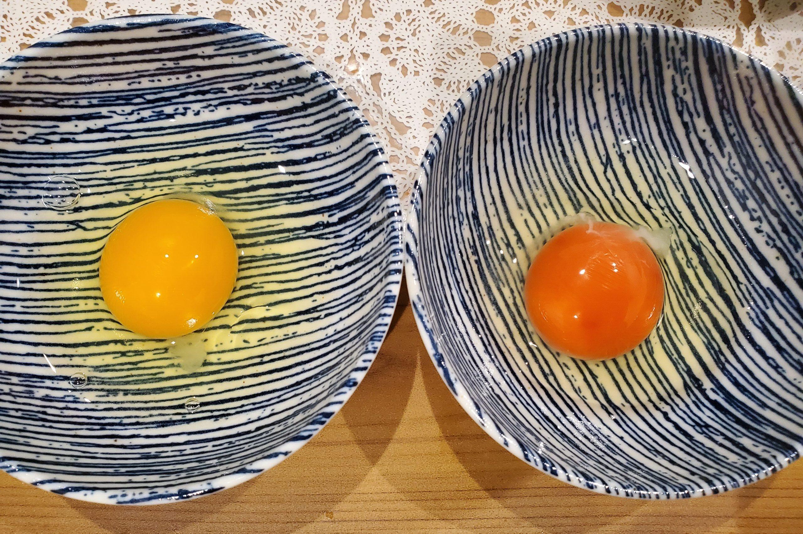 卵比較 アローカナ