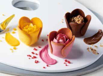 Tulip rose